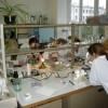 Лаборатория для юных естествоиспытателей откроется в Томске