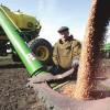 Чем богата Томская земля и что выращивают наши крестьяне?