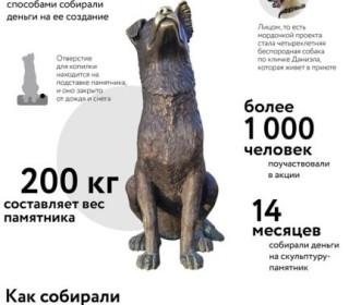 В День студента ТГУ откроет памятник-копилку для сбора средств в помощь бездомным животным
