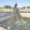 Как впервые в Томской области черная икра рекой потекла