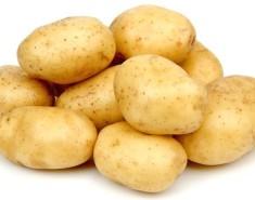 Как победить картофельную нематоду