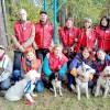 Томские четвероногие волонтеры ищут пропавших людей