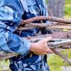 Кому икак можно собирать «лесные отходы»?