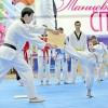 Завтра всеверской «Олимпии» открывается 16-й фестиваль неолимпийских видов спорта иединоборств