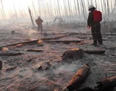 Дюжина добровольцев из Колпашевского района помогала огнеборцам ликвидировать пожар