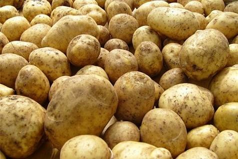 Социальный картофель