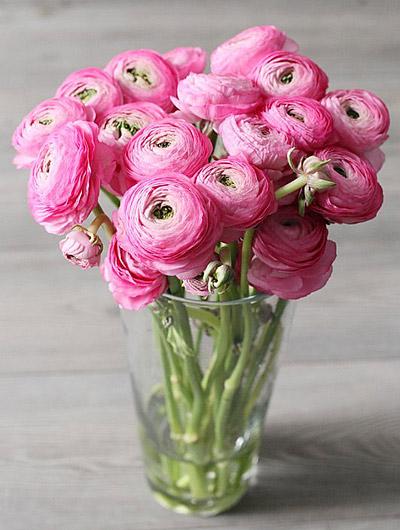 цветы06