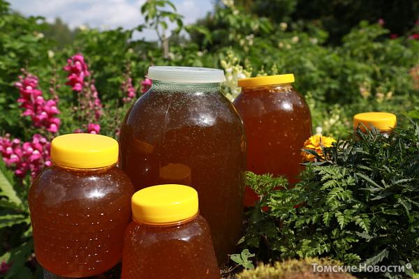 мёд пасека02