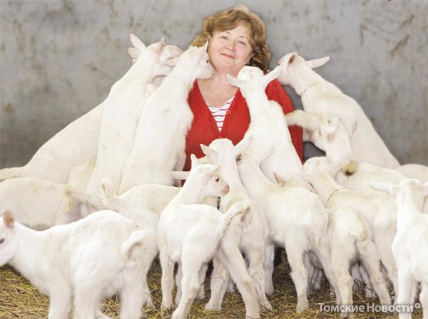 Галина Потапова, хозяйка козьей фермы в Старой Ювале, уже посчитала, сколько козьего молока она сможет дать на производство моцареллы