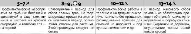 Календарь 2010 год купить