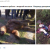 Новость об асиновском медведе-убийце оказалась фейком