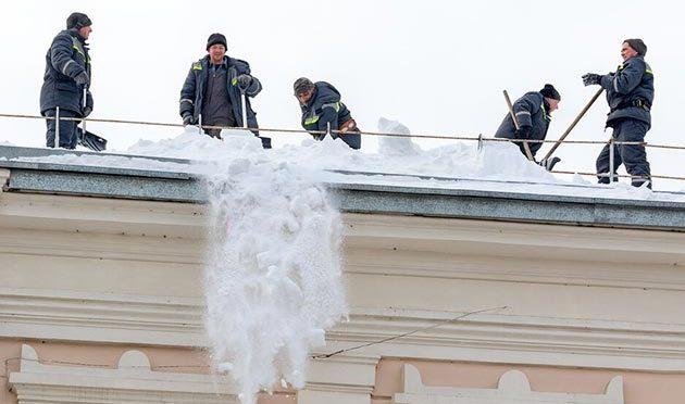 Снежная вахтатомских прокуроров