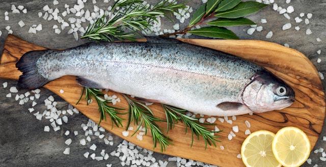 Южная Корея и Африка компенсировали закрытие Китая для российских экспортёров рыбы и морепродуктов