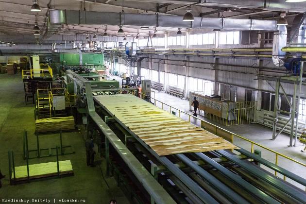 Общий объем инвестиций в  проект по созданию лесопромышленного парка в Асине до 2022 года превысит 30 млрд рублей, в настоящее время вложено уже 15 млрд