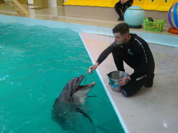 delfinarij